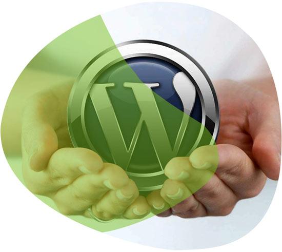 content management system development company main image